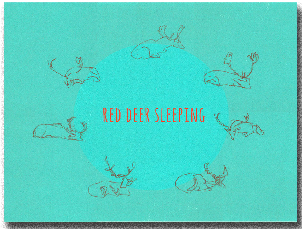 RedDeerSleeping copy